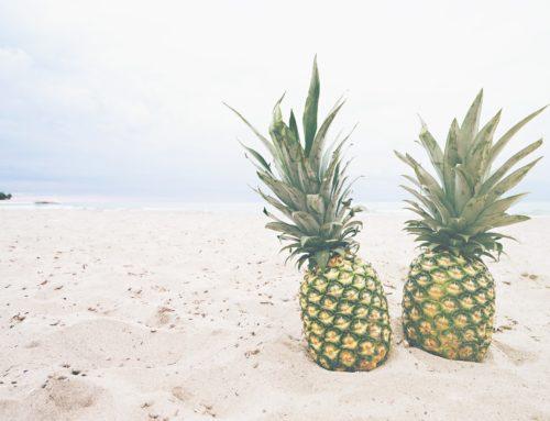 L'ananas, un fruit à croquer!