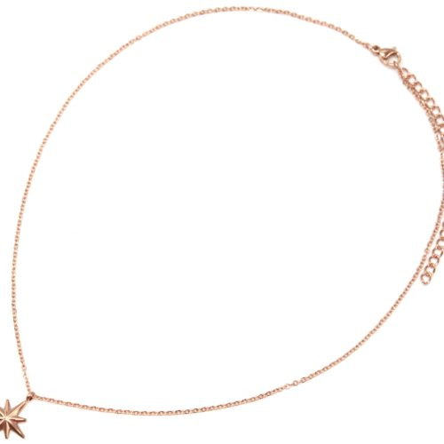 Collier-Fine-Chaine-avec-Pendentif-Etoile-Polaire-Acier-Or-Rose