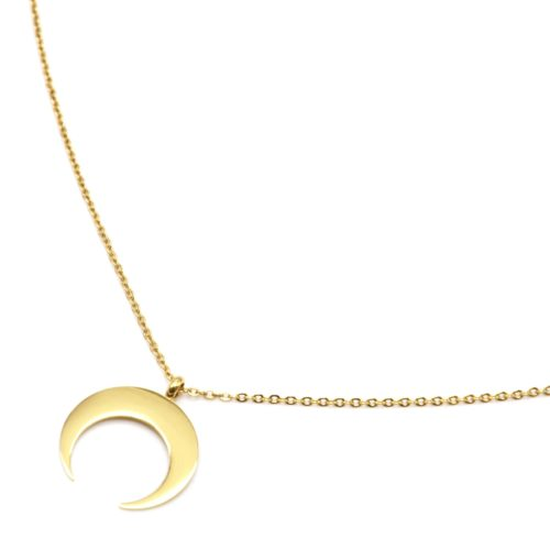 Sautoir-Collier-Fine-Chaine-avec-Pendentif-Corne-Lune-Acier-Dore