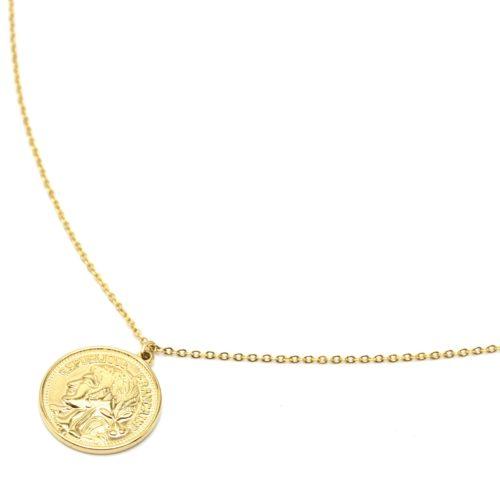 Sautoir-Collier-Fine-Chaine-Pendentif-Piece-Monnaie-Napoleon-Acier-Dore