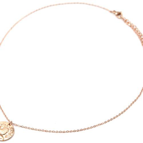 Collier-Pendentif-Medaille-Signe-Astro-Lion-Acier-Or-Rose