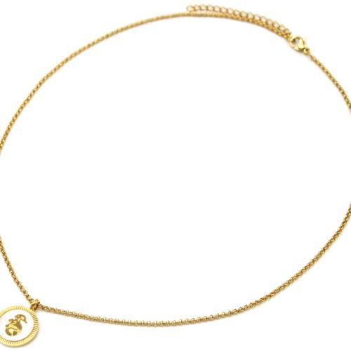 Collier-Pendentif-Medaille-Signe-Astro-Capricorne-Acier-Dore-et-Nacre-Blanc