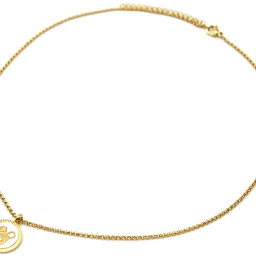 Collier-Pendentif-Medaille-Signe-Astro-Lion-Acier-Dore-et-Nacre-Blanc