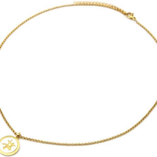 Collier-Pendentif-Medaille-Signe-Astro-Sagittaire-Acier-Dore-et-Nacre-Blanc